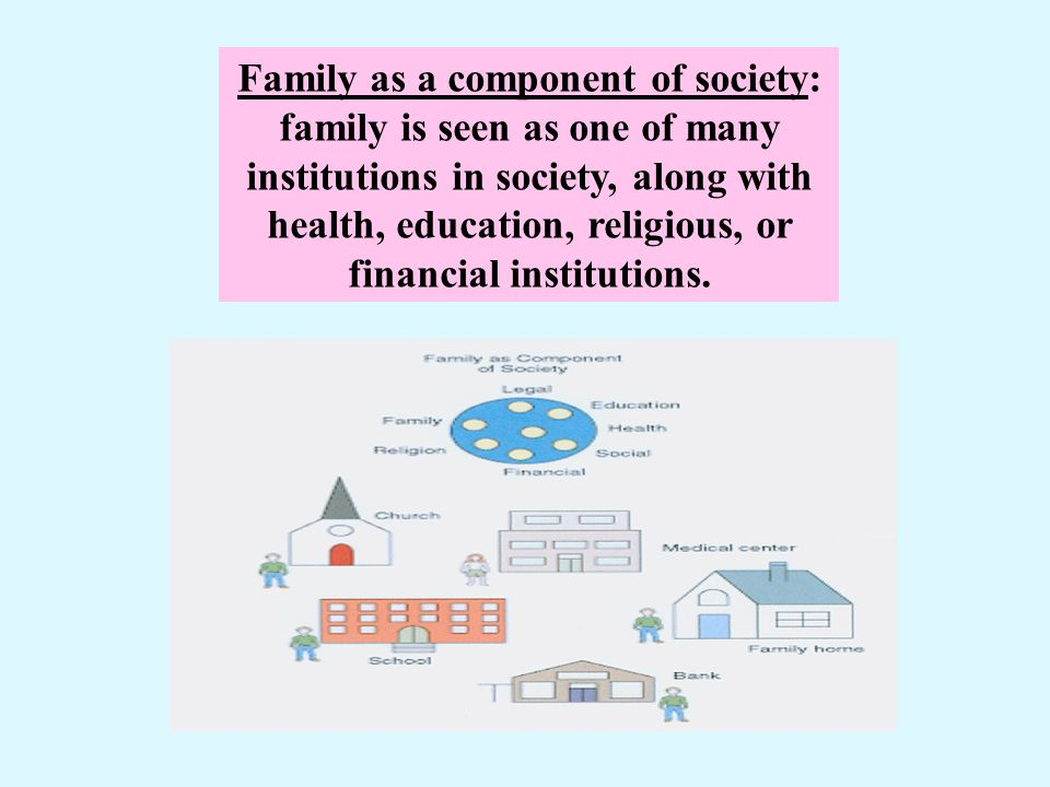 Family as a component of society: family is seen as one of many institutions in society, along with health, education, religious, or financial institu