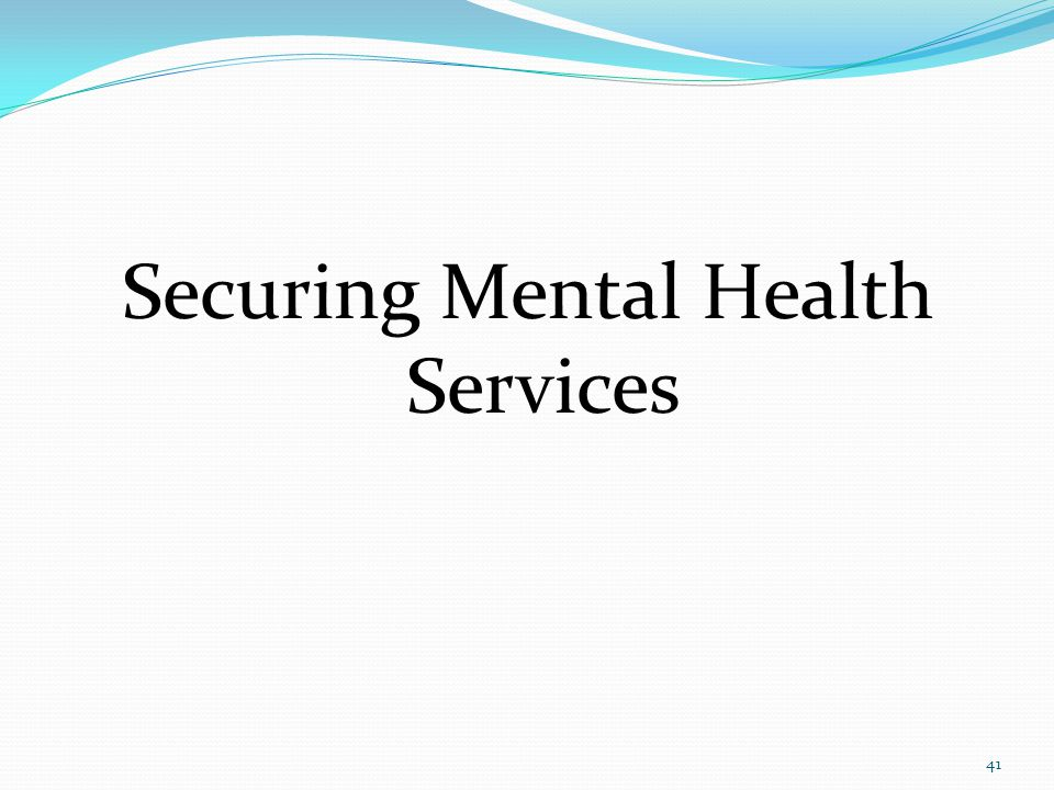 Securing Mental Health Services 41