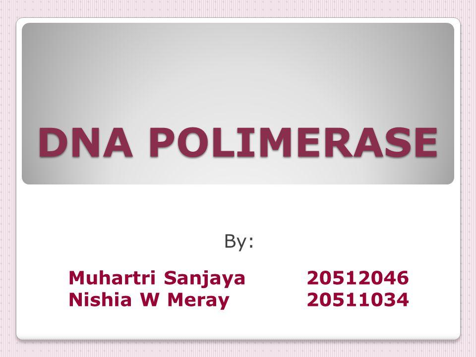 DNA POLIMERASE By: Muhartri Sanjaya20512046 Nishia W Meray20511034