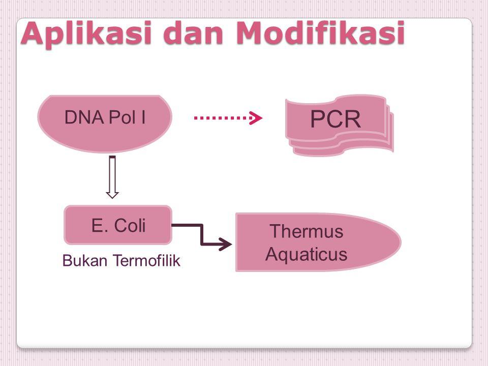 Aplikasi dan Modifikasi DNA Pol I PCR E. Coli Bukan Termofilik Thermus Aquaticus