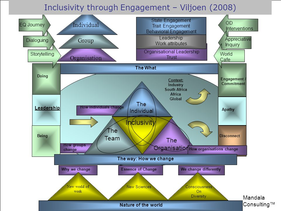 The individual The Team The Organisation Level of engagement Assumptions About We Assumptions About They Assumptions About Me and Society Context National Cultural Level of Engagement