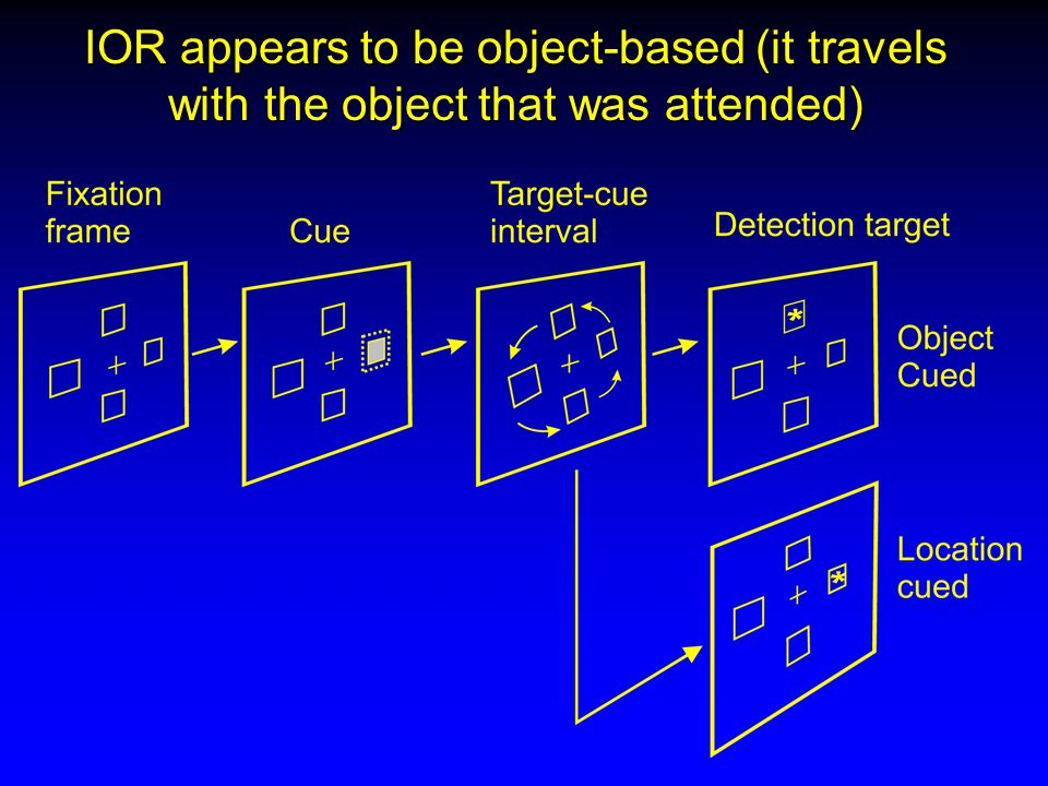 IOR appears to be object-based (it travels with the object that was attended)