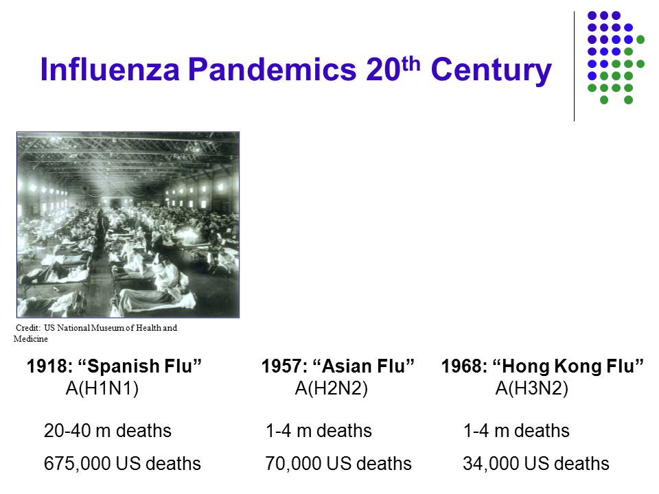 Influenza Pandemics 20 th Century A(H1N1)A(H2N2)A(H3N2) 1918: Spanish Flu 1957: Asian Flu 1968: Hong Kong Flu 20-40 m deaths 675,000 US deaths 1-4 m deaths 70,000 US deaths 1-4 m deaths 34,000 US deaths Credit: US National Museum of Health and Medicine