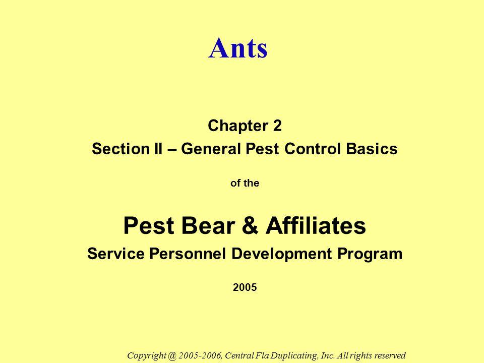 Ants Chapter 2 Section II – General Pest Control Basics of the Pest Bear & Affiliates Service Personnel Development Program 2005 Copyright @ 2005-2006