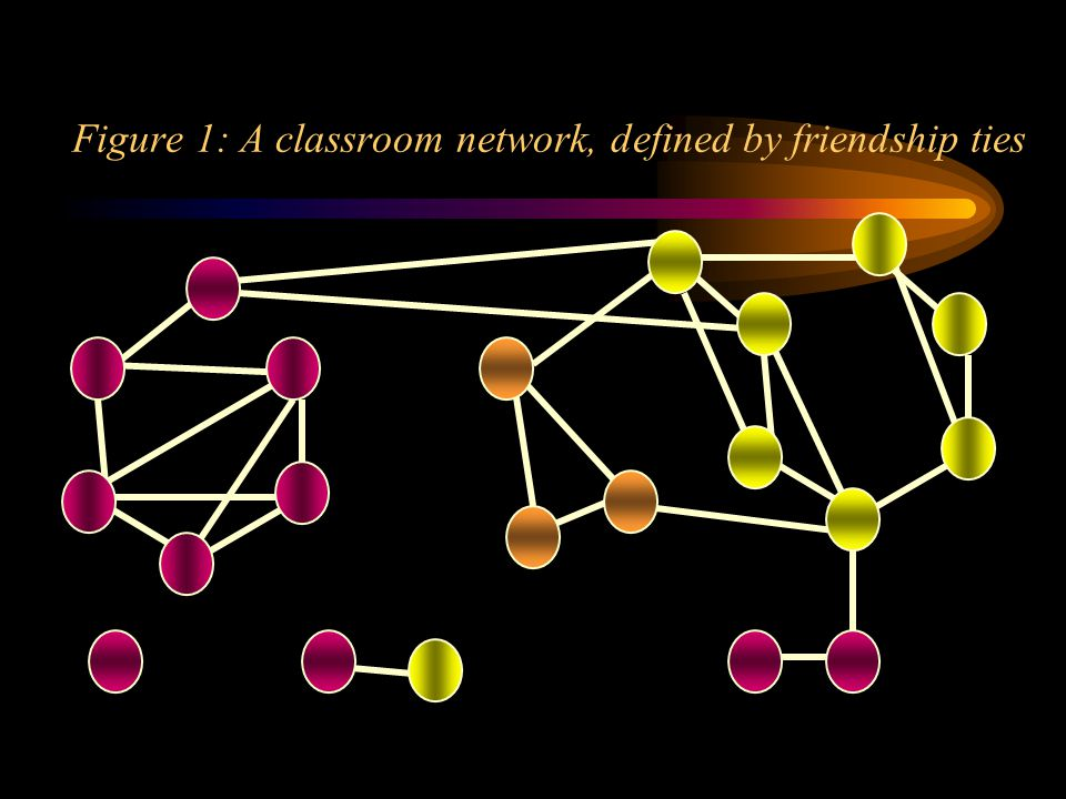 Figure 1: A classroom network, defined by friendship ties