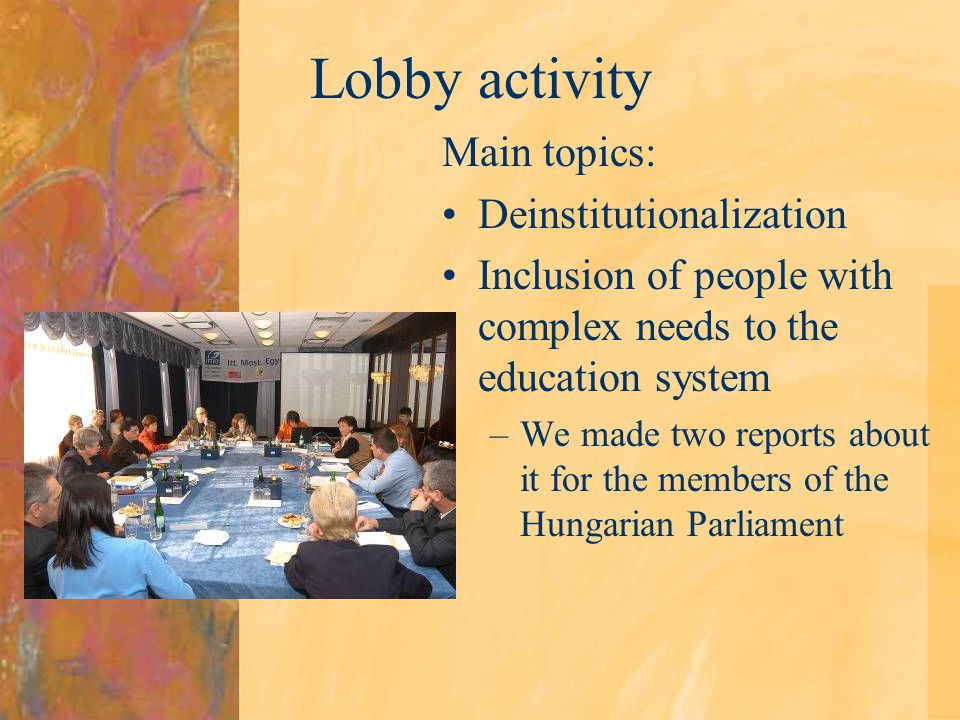 Lobby activity Main topics: Deinstitutionalization Inclusion of people with complex needs to the education system –We made two reports about it for th