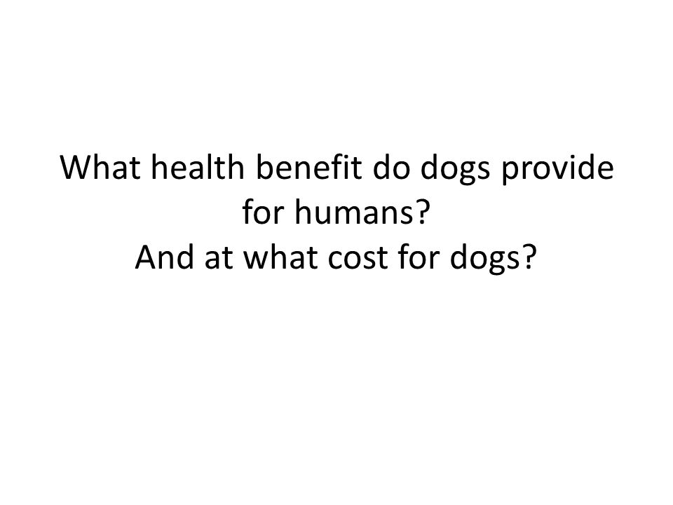 What health benefit do dogs provide for humans And at what cost for dogs