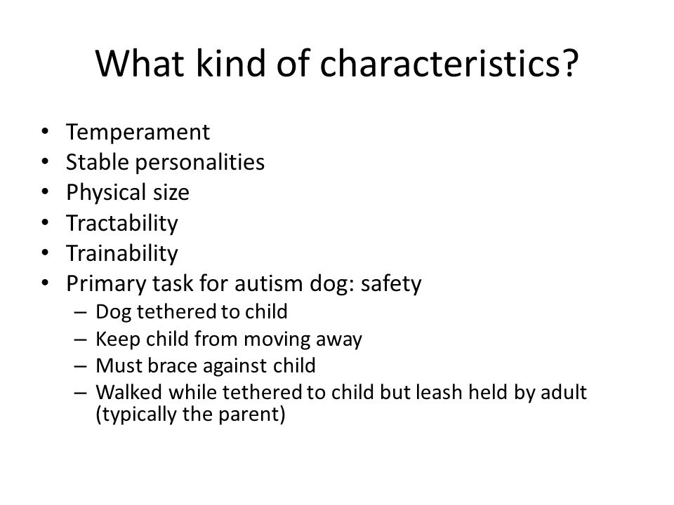 What kind of characteristics? Temperament Stable personalities Physical size Tractability Trainability Primary task for autism dog: safety – Dog tethe