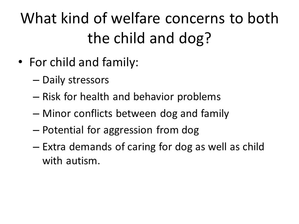 What kind of welfare concerns to both the child and dog? For child and family: – Daily stressors – Risk for health and behavior problems – Minor confl