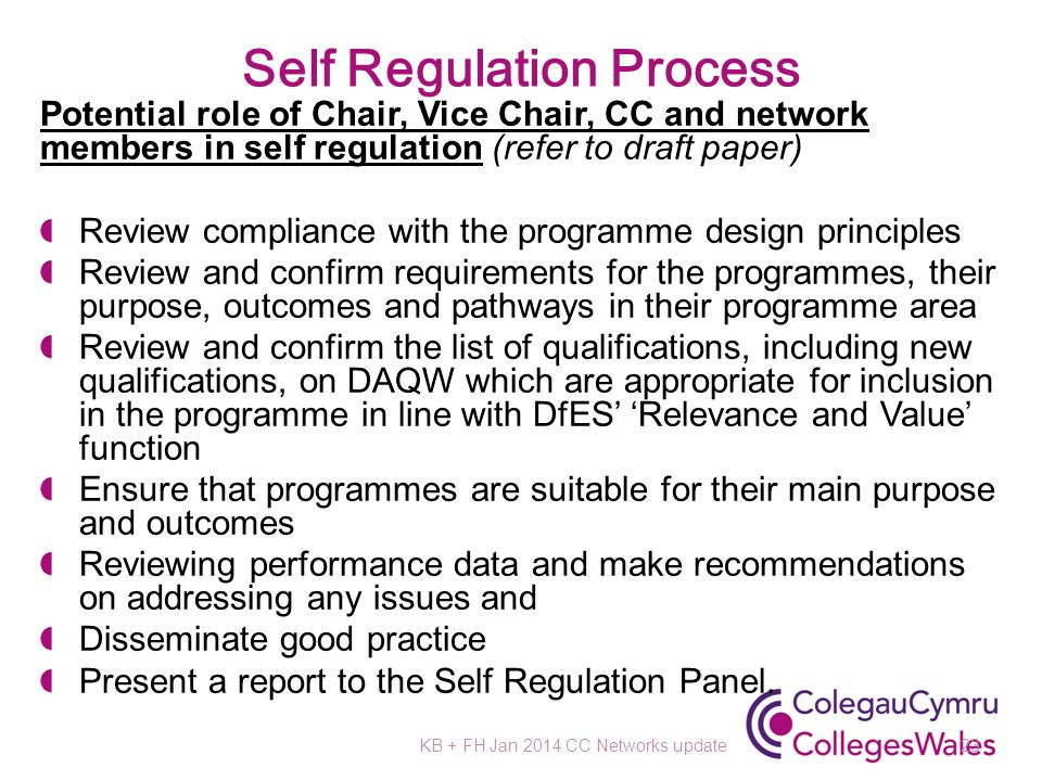 Self Regulation Process Potential role of Chair, Vice Chair, CC and network members in self regulation (refer to draft paper) Review compliance with the programme design principles Review and confirm requirements for the programmes, their purpose, outcomes and pathways in their programme area Review and confirm the list of qualifications, including new qualifications, on DAQW which are appropriate for inclusion in the programme in line with DfES' 'Relevance and Value' function Ensure that programmes are suitable for their main purpose and outcomes Reviewing performance data and make recommendations on addressing any issues and Disseminate good practice Present a report to the Self Regulation Panel.