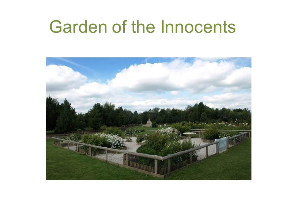 Garden of the Innocents