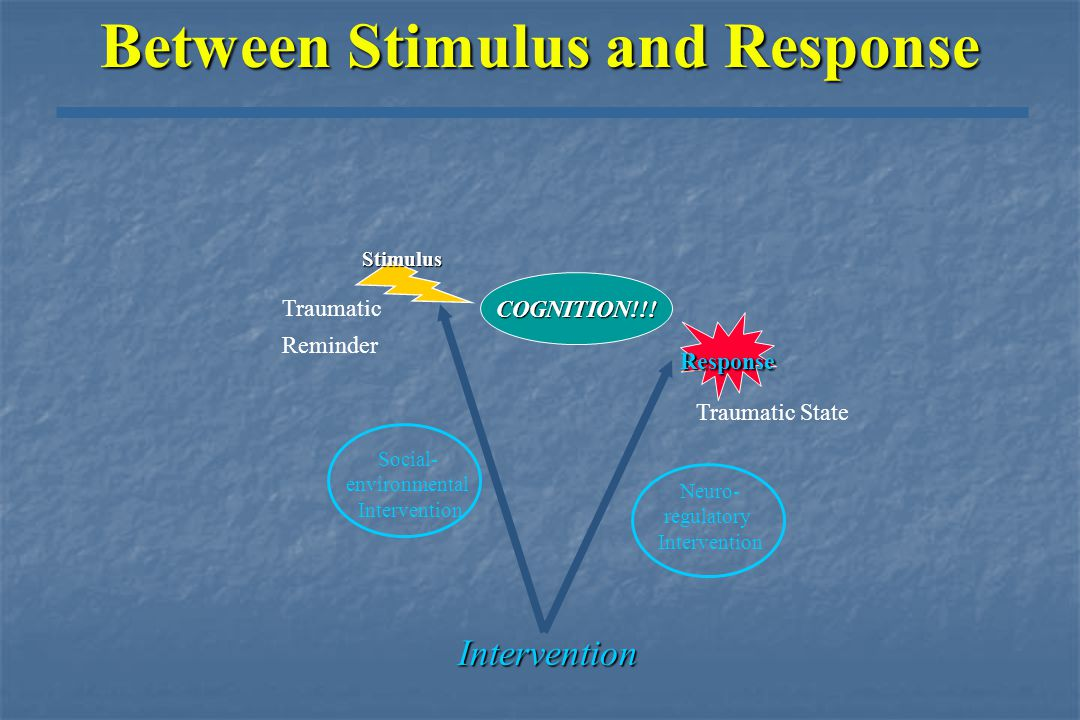Response Stimulus Traumatic Reminder Traumatic State Intervention Social- environmental intervention Neuro- regulatory Intervention