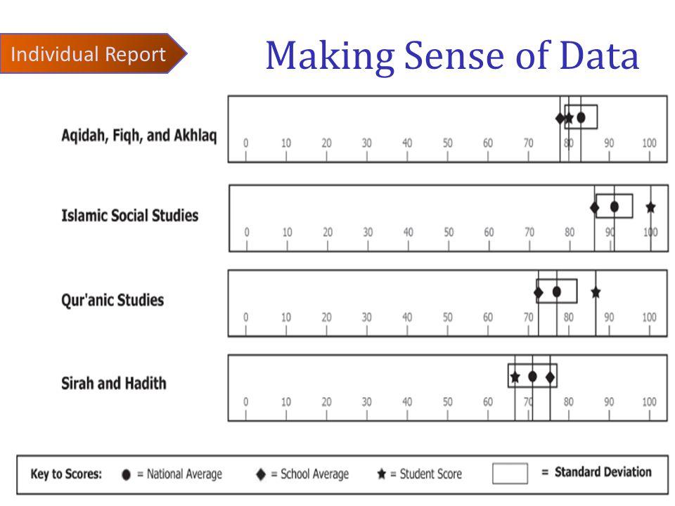 Making Sense of Data Individual Report