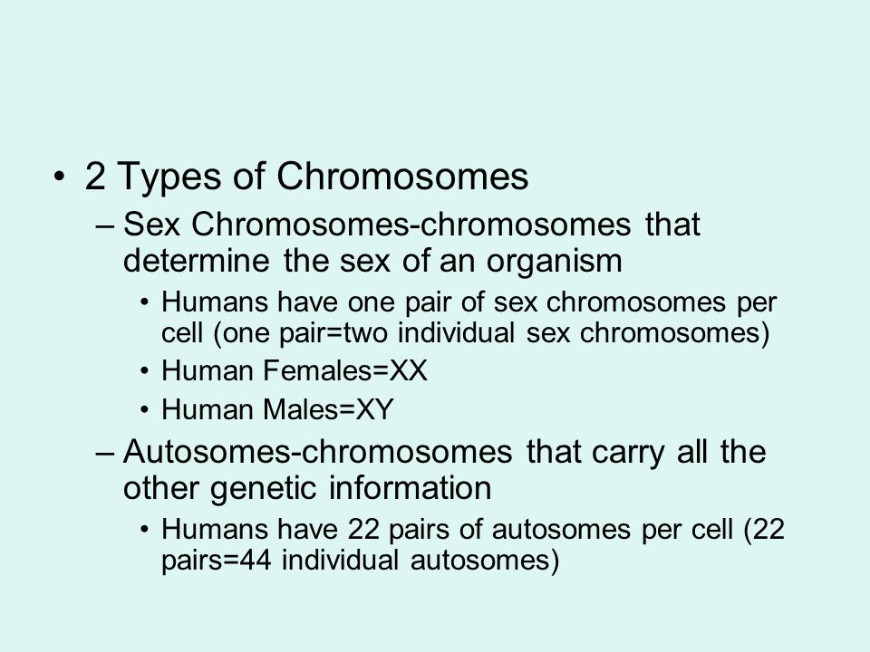 Human cells have a total of 23 pairs of chromosomes (23 pairs=46 individual chromosomes) If a person has too many or too few chromosomes there are severe consequences.