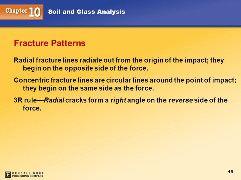 Soil and Glass Analysis 19 Fracture Patterns Radial fracture lines radiate out from the origin of the impact; they begin on the opposite side of the force.