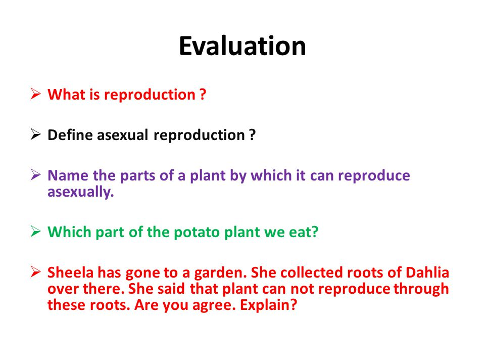 Evaluation  What is reproduction ?  Define asexual reproduction ?  Name the parts of a plant by which it can reproduce asexually.  Which part of t