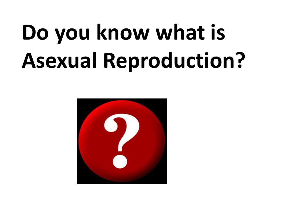 Do you know what is Asexual Reproduction?