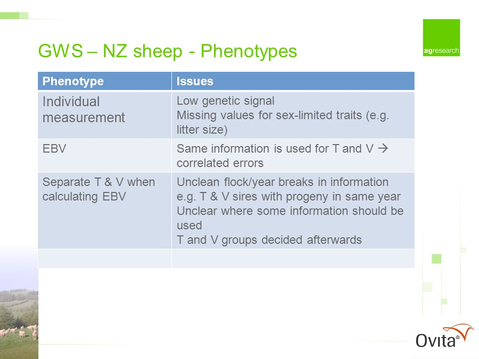 GWS – NZ sheep - Phenotypes PhenotypeIssues Individual measurement Low genetic signal Missing values for sex-limited traits (e.g.