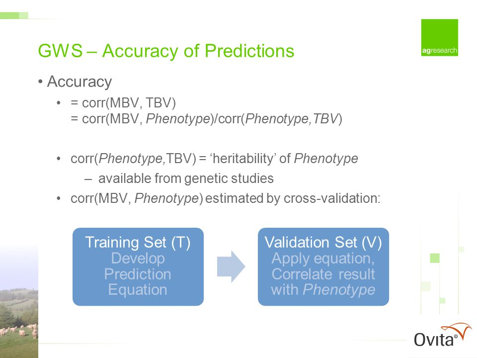 GWS – Accuracy of Predictions Accuracy = corr(MBV, TBV) = corr(MBV, Phenotype)/corr(Phenotype,TBV) corr(Phenotype,TBV) = 'heritability' of Phenotype –available from genetic studies corr(MBV, Phenotype) estimated by cross-validation: Training Set (T) Develop Prediction Equation Validation Set (V) Apply equation, Correlate result with Phenotype