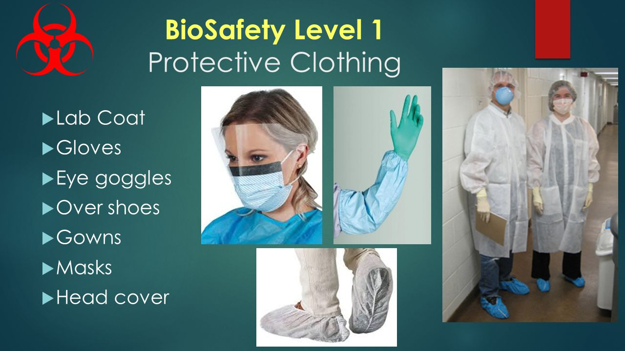 BioSafety Level 1 Protective Clothing  Lab Coat  Gloves  Eye goggles  Over shoes  Gowns  Masks  Head cover