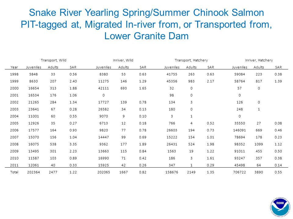 Snake River Yearling Spring/Summer Chinook Salmon PIT-tagged at, Migrated In-river from, or Transported from, Lower Granite Dam Transport, WildInriver