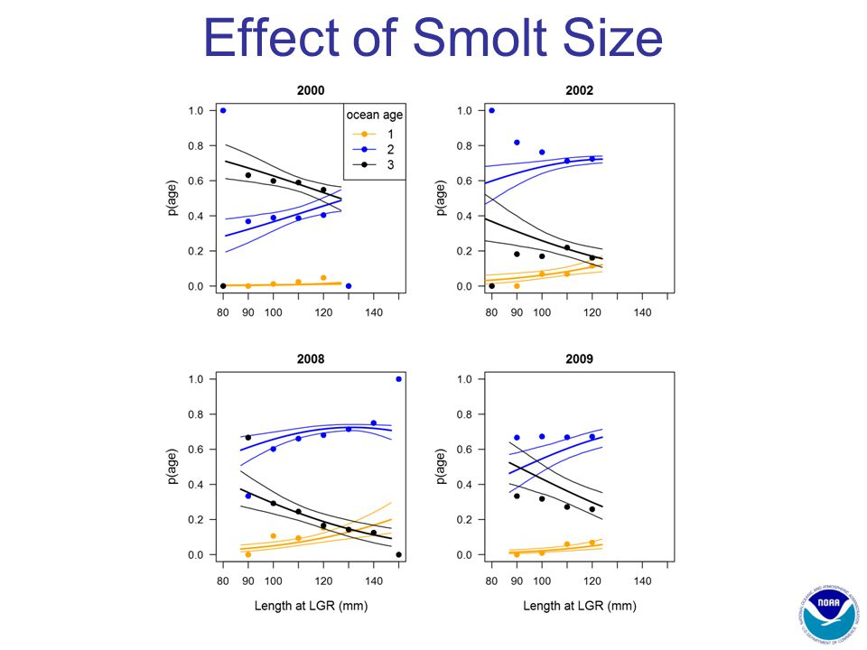 Effect of Smolt Size