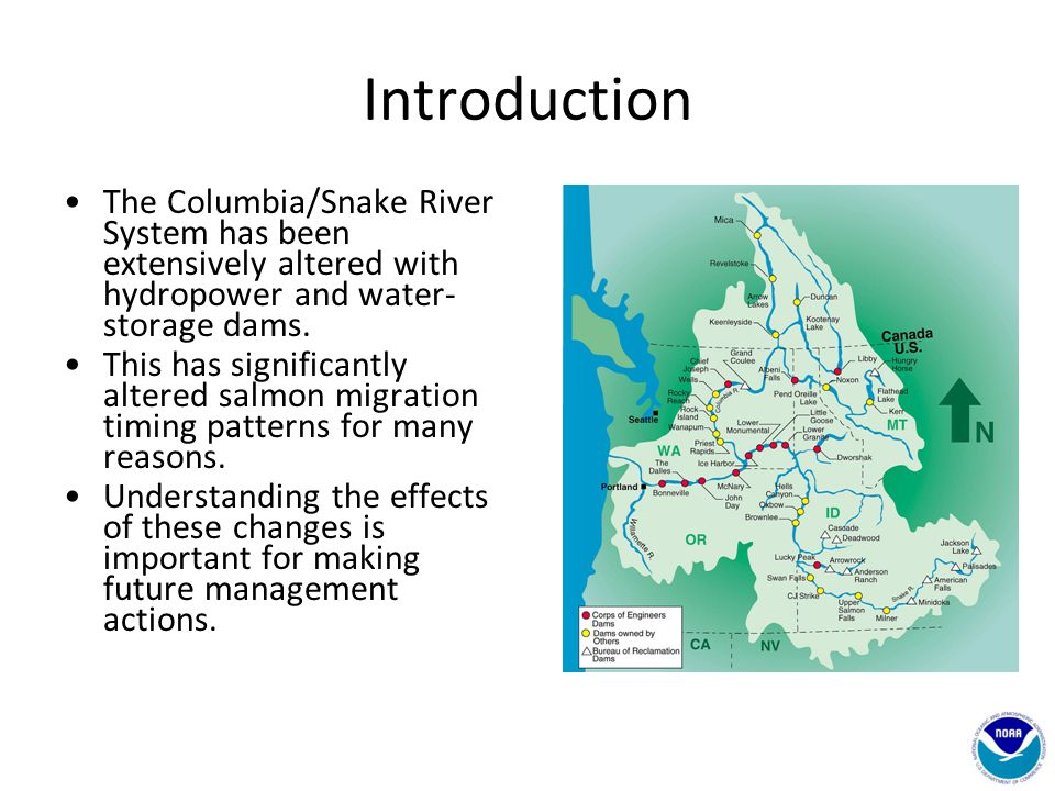 Introduction The Columbia/Snake River System has been extensively altered with hydropower and water- storage dams. This has significantly altered salm