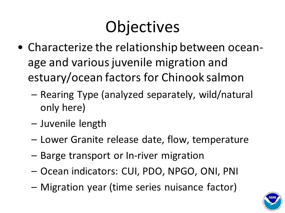 Objectives Characterize the relationship between ocean- age and various juvenile migration and estuary/ocean factors for Chinook salmon –Rearing Type