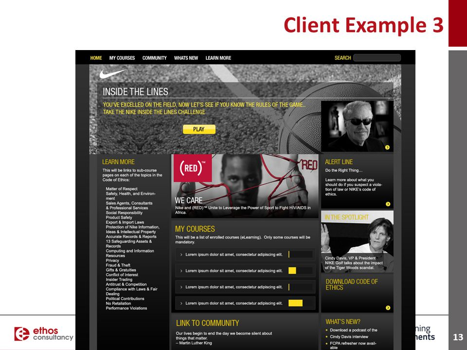 13 Client Example 3