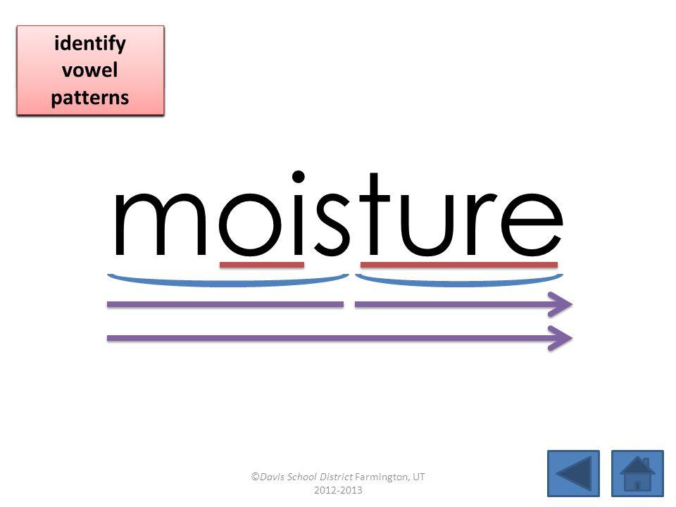 moisture blend together identify vowel patterns blend individual syllables identify vowel patterns blend individual syllables identify vowel patterns ©Davis School District Farmington, UT 2012-2013