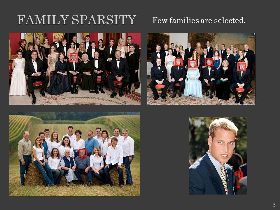 FAMILY SPARSITY 5 ? Few families are selected.