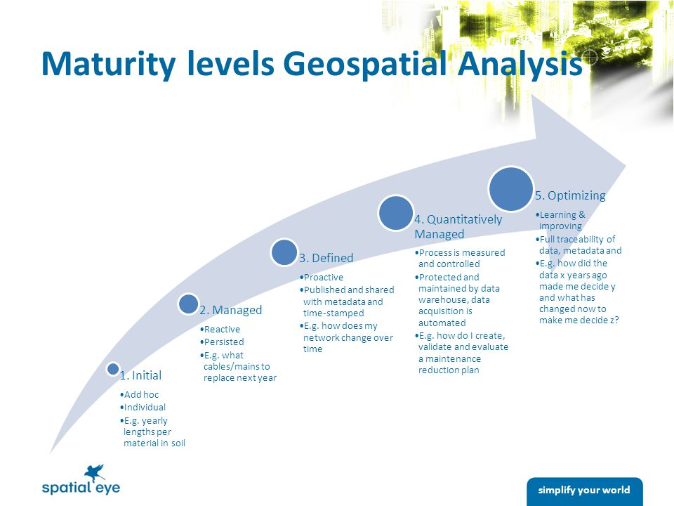 simplify your world Maturity levels Geospatial Analysis 1.