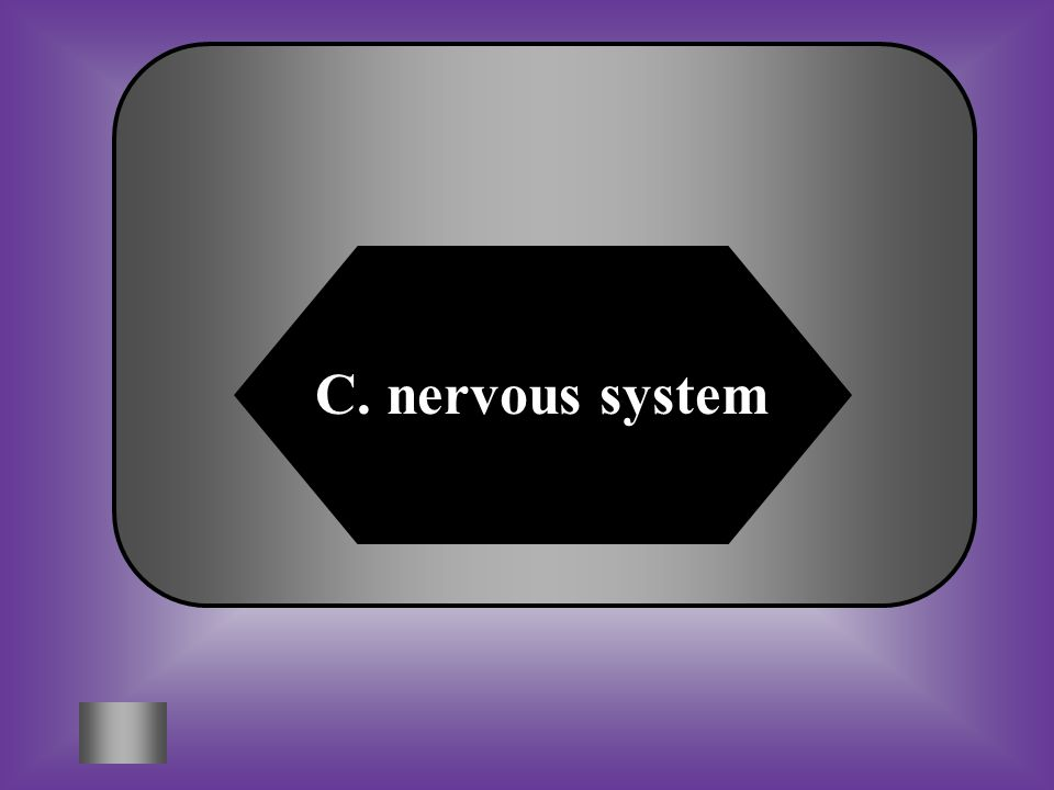 A:B: endocrine systemlymphatic system C:D: nervous systemrespiratory system #8 In this diagram, one cell releases chemicals that travel to a second cell and sends messages to other parts of the body.