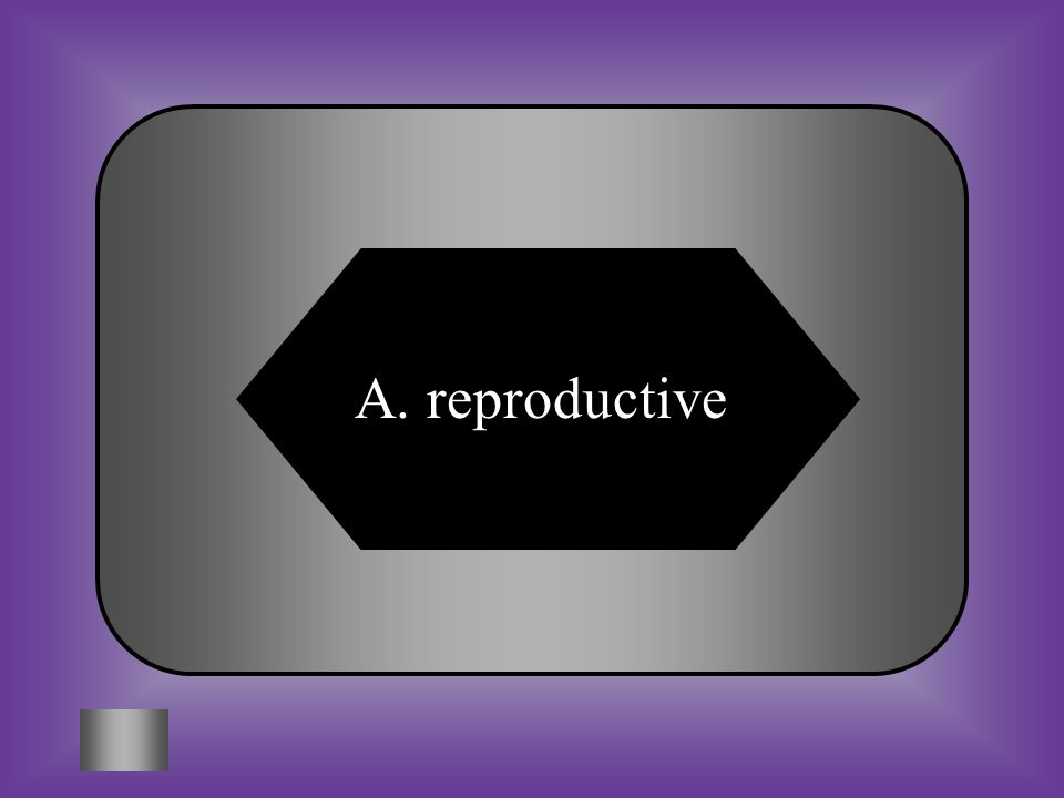 A:B: reproductiveintegumentary # 16 This system is different in males and females and assures the survival of each species.