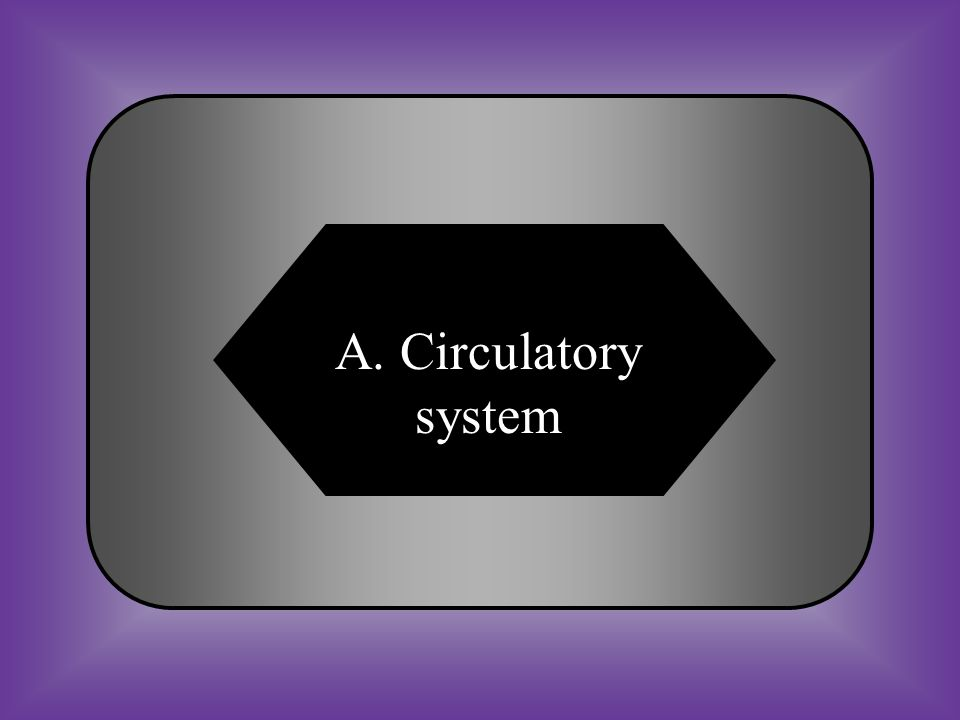 A:B: circulatory systemslungs #27 Nutrients that are absorbed by the small intestine travel to the individual cells in the human body through the __________________.
