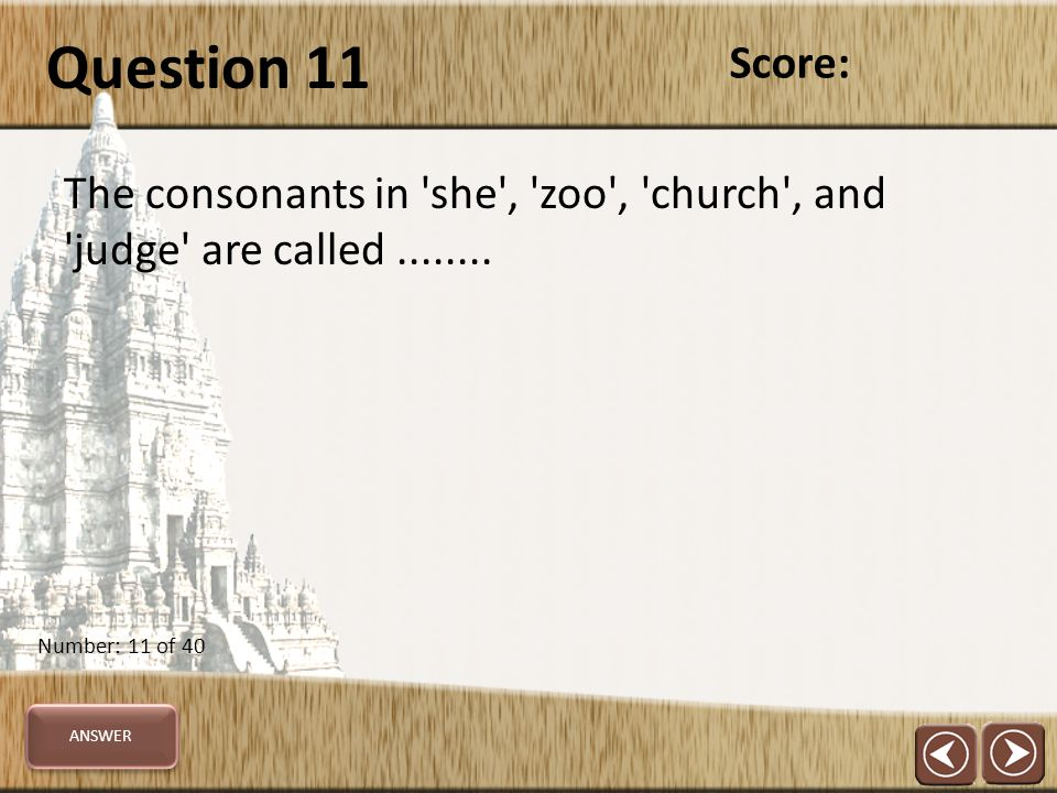 Question 11 The consonants in she , zoo , church , and judge are called........