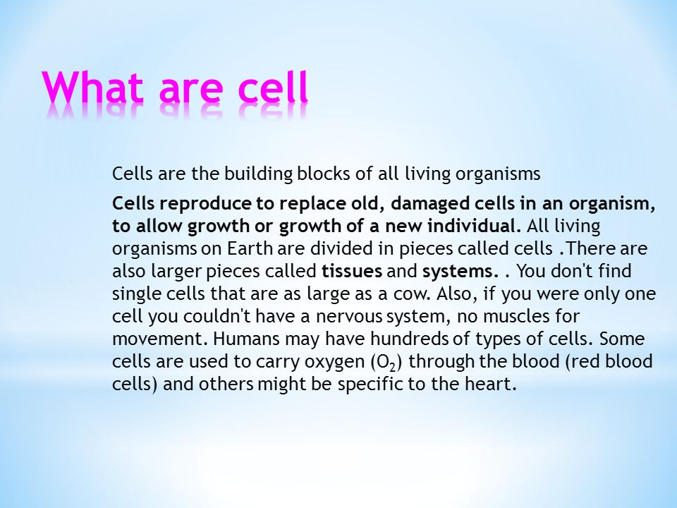 Cells are the building blocks of all living organisms Cells reproduce to replace old, damaged cells in an organism, to allow growth or growth of a new