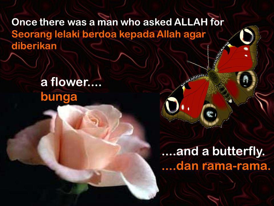 Once there was a man who asked ALLAH for Seorang lelaki berdoa kepada Allah agar diberikan a flower....
