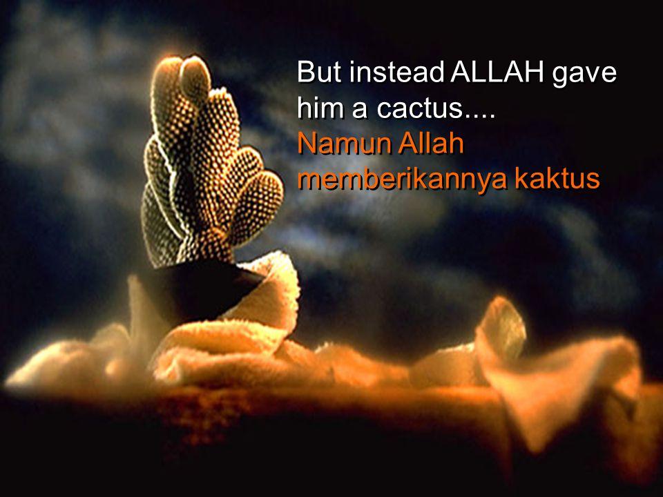 Once there was a man who asked ALLAH for Seorang lelaki berdoa kepada Allah agar diberikan a flower.... bunga....and a butterfly.....dan rama-rama.
