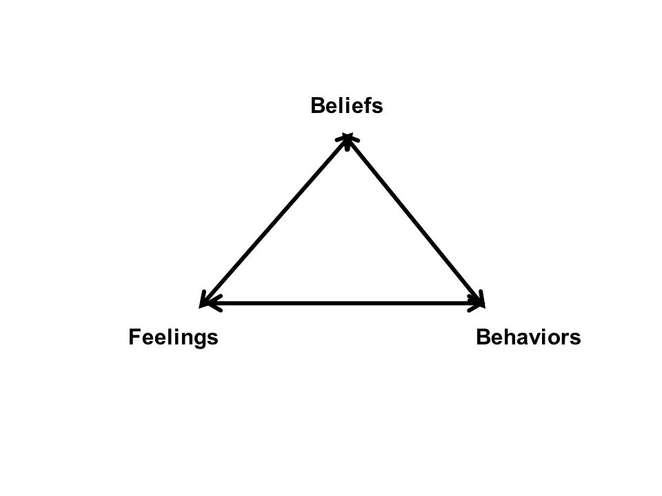 Beliefs FeelingsBehaviors