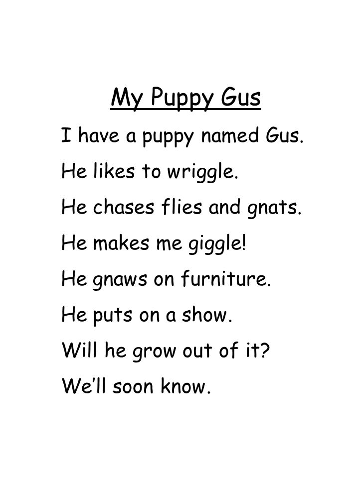 My Puppy Gus I have a puppy named Gus. He likes to wriggle. He chases flies and gnats. He makes me giggle! He gnaws on furniture. He puts on a show. W
