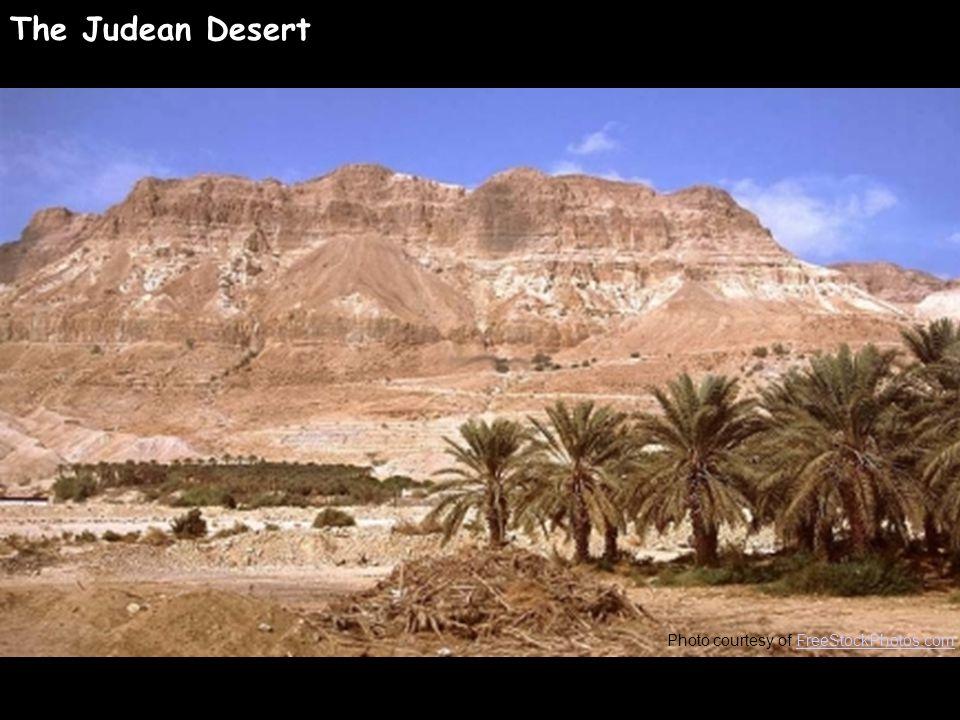 Photo courtesy of FreeStockPhotos.comFreeStockPhotos.com The Judean Desert