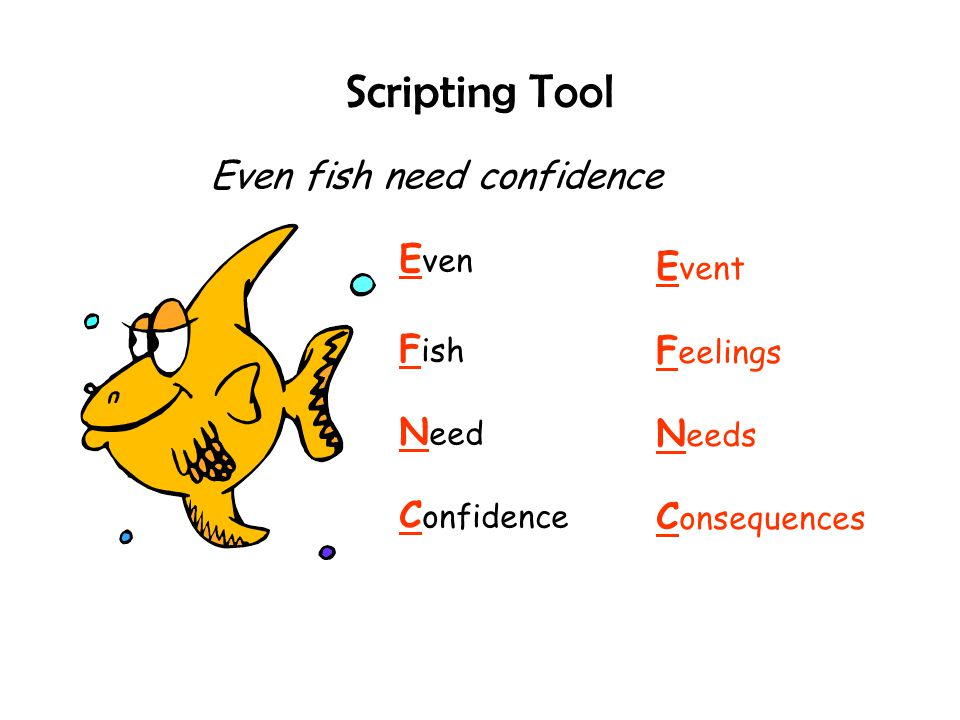Scripting Tool E ven F ish N eed C onfidence Even fish need confidence E vent F eelings N eeds C onsequences