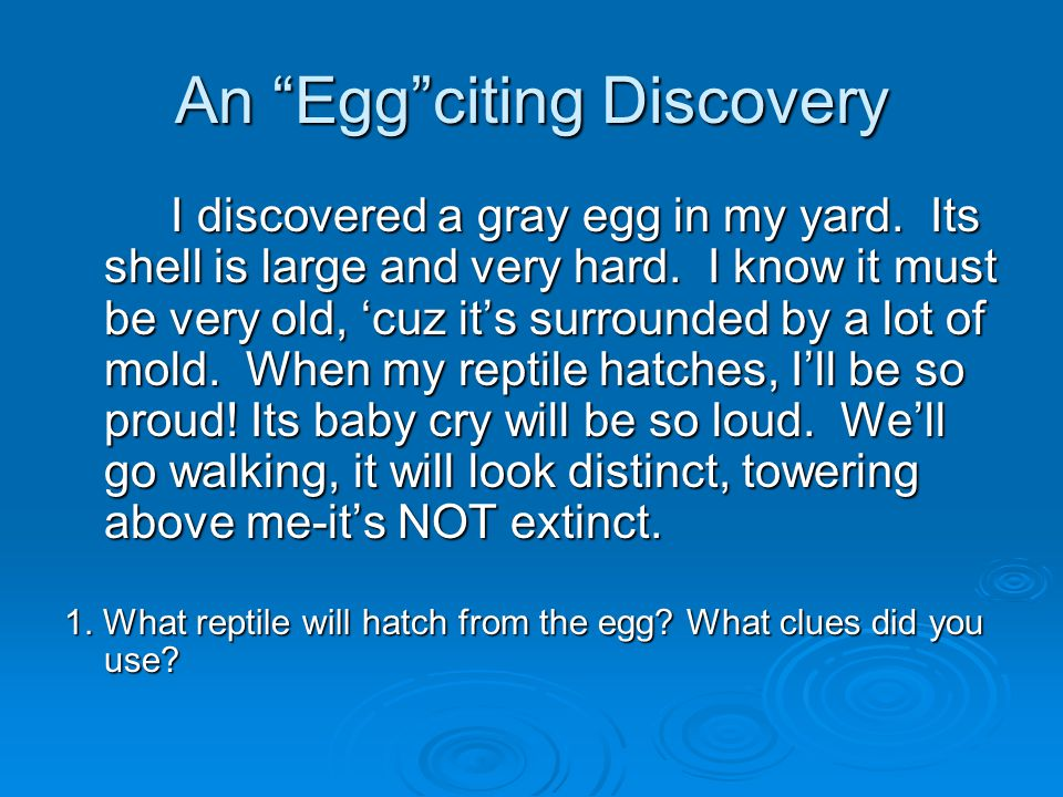 An Egg citing Discovery I discovered a gray egg in my yard.