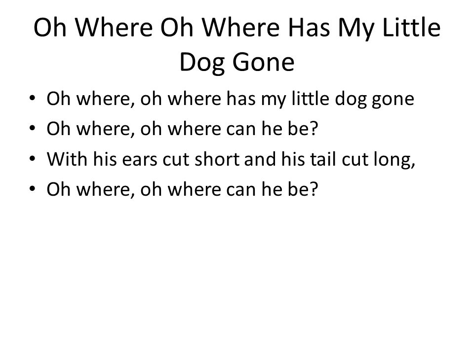 Oh Where Oh Where Has My Little Dog Gone Oh where, oh where has my little dog gone Oh where, oh where can he be? With his ears cut short and his tail
