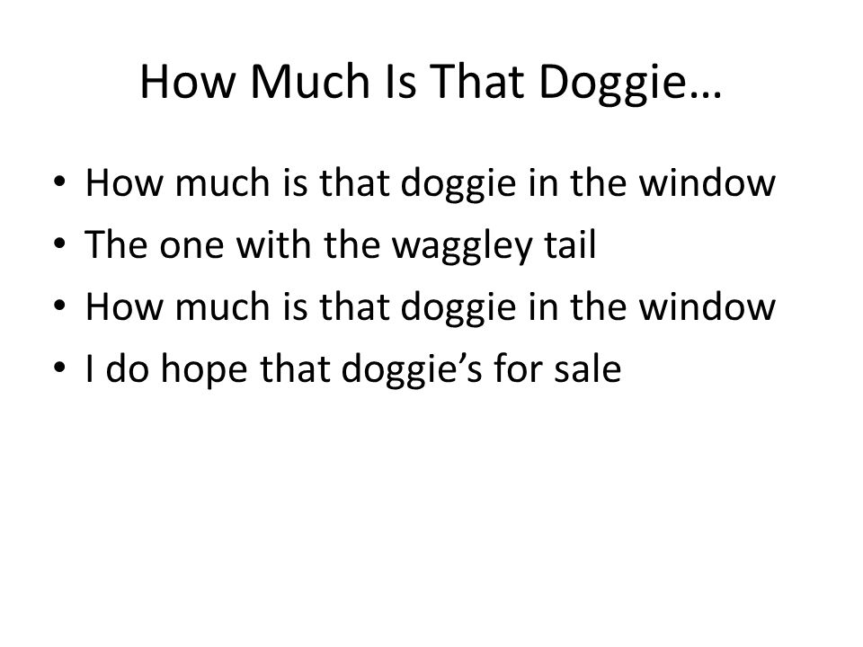 How Much Is That Doggie… How much is that doggie in the window The one with the waggley tail How much is that doggie in the window I do hope that dogg