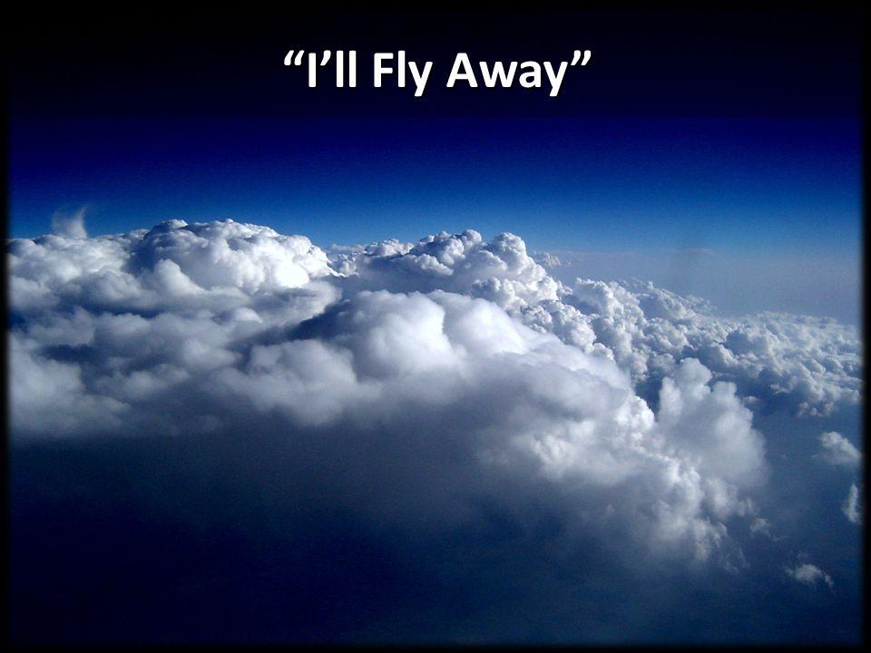 """I'll Fly Away"""