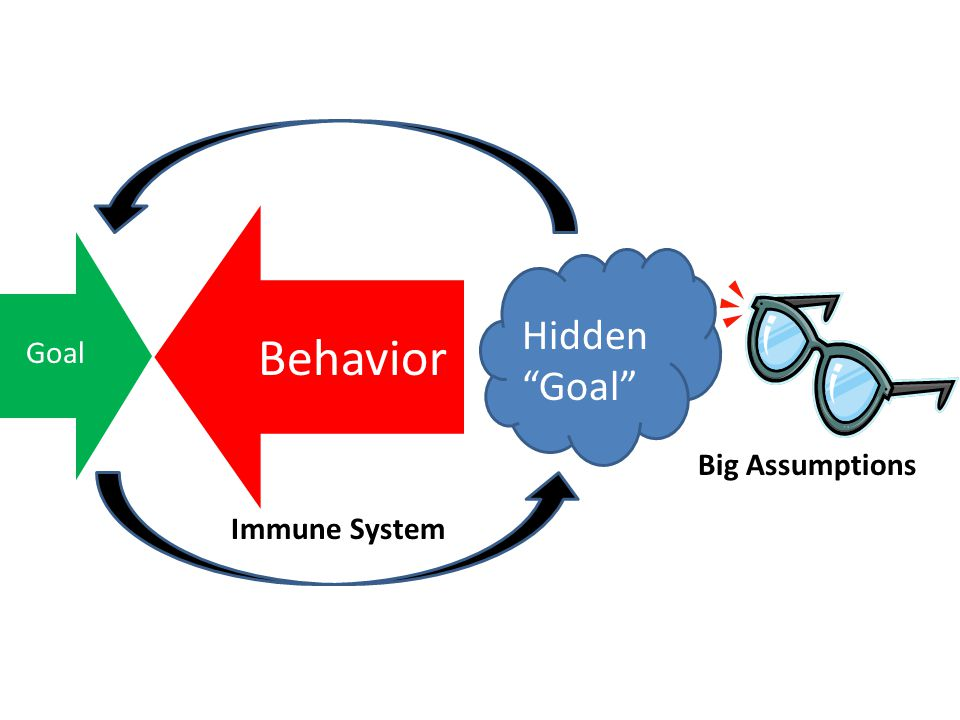 "Behavior Goal Hidden ""Goal"" Immune System Big Assumptions"