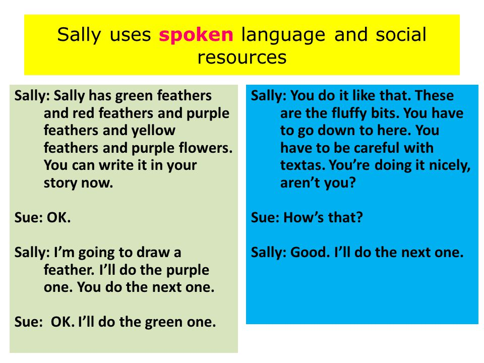 Sally uses spoken language and social resources Sally: Sally has green feathers and red feathers and purple feathers and yellow feathers and purple flowers.