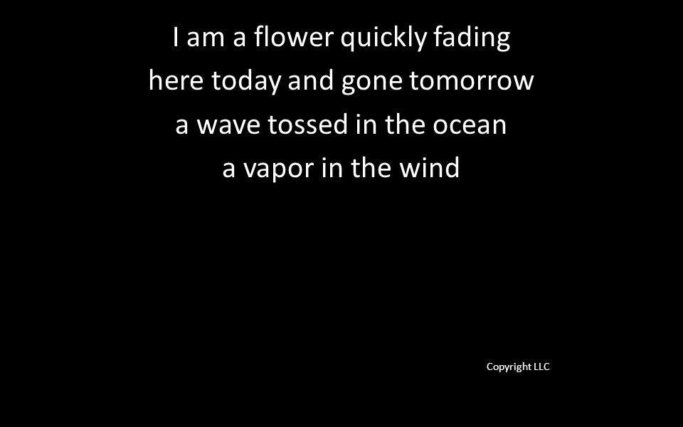 I am a flower quickly fading here today and gone tomorrow a wave tossed in the ocean a vapor in the wind Copyright LLC